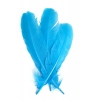 """Turkey Quill 12"""" Turquoise"""